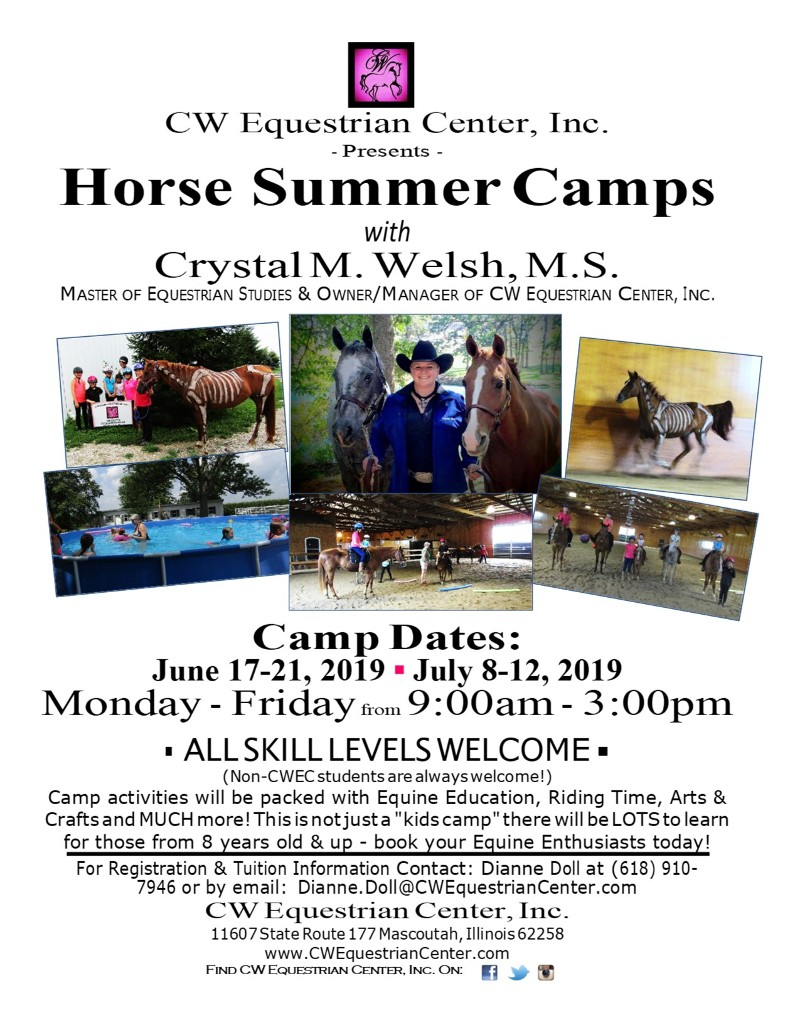 Horse Summer Camps